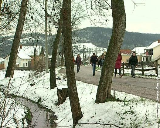 Dijaspora oživela selo