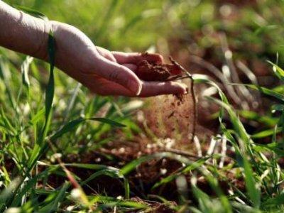 Posledice nakaradne organizacione racionalizacije Ministarstva poljoprivrede