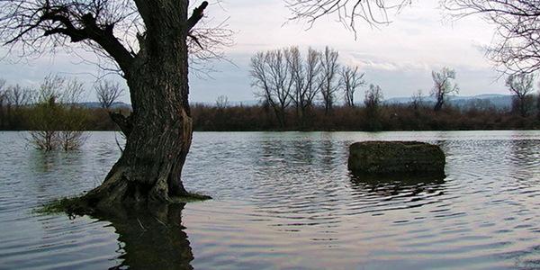 Vanredna odbrana na oko 30 kilometara u Vojvodini