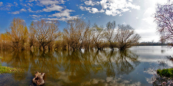 Marić: Vodostaj reka u stagnaciji
