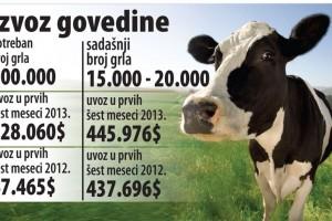 Proizvodimo sve manje govedine