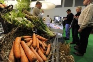 Nedovoljna proizvodnja organske hrane u Srbiji