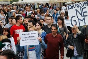 Vlada da zabrani GMO u Srbiji