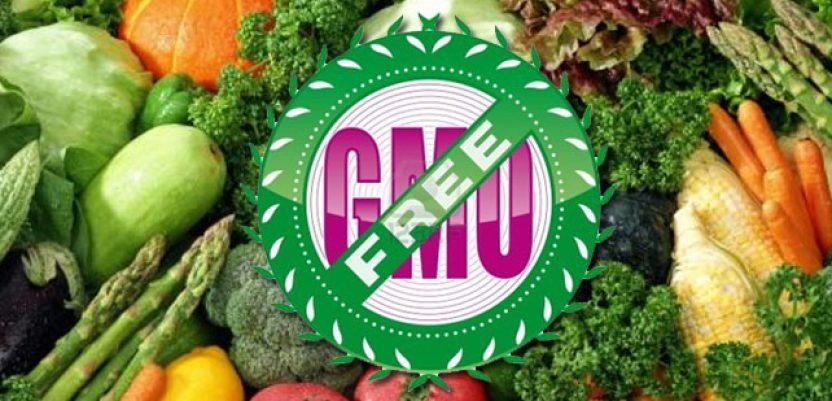 Predložene izmene Zakona o bezbednosti hrane omogućavaju GMO
