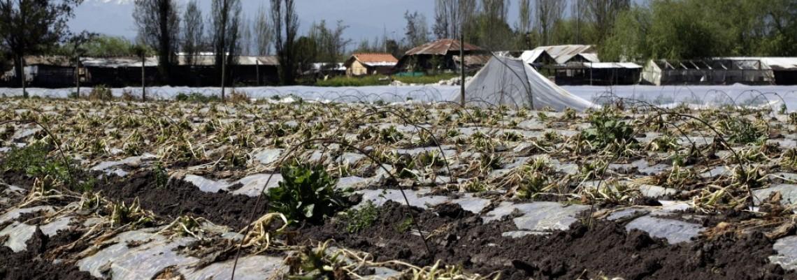 Vanredno stanje u Čileu zbog mraza