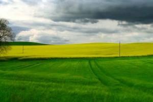 Stranci će kupovati bugarsku zemlju