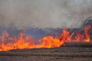 Još jedan apel da se ne spaljuju žetveni ostaci