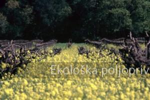 Udeo ekološke poljoprivrede u Hrvatskoj samo 2,45%