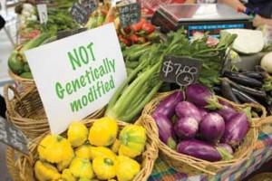 Kako prepoznati GM hranu?