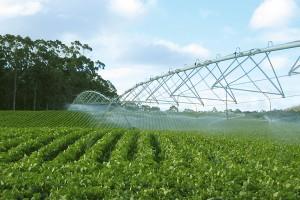 Dve stotine miliona dolara za unapređenje agrara Srbije