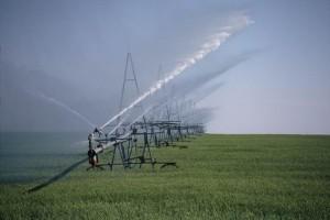 Al Ravafed gradi 65 kilometara dug sistem za navodnjavanje