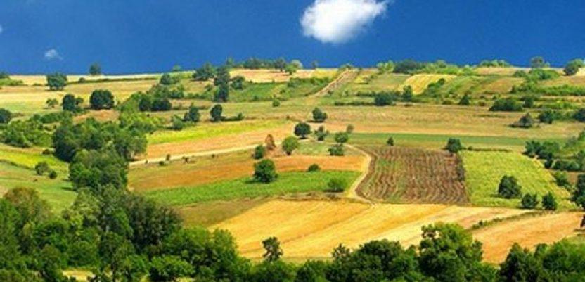 Može li Srbija da izbegne rasprodaju poljoprivrednog zemljišta strancima