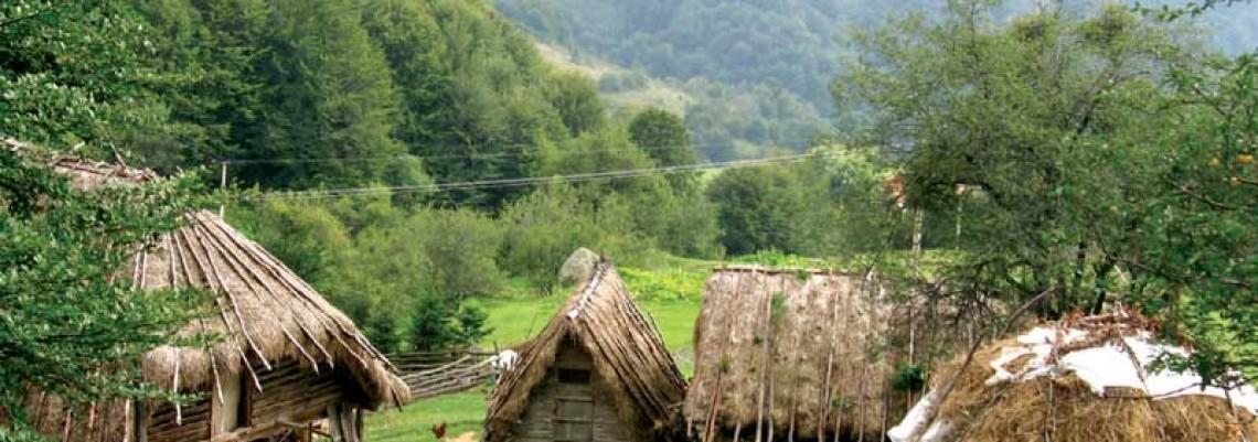 Ko su nosioci seoskog razvoja?