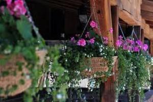 Raspisan konkurs za unapređenje seoskog turizma