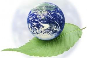 Sledeće godine plan primene ključnih direktiva o životnoj sredini