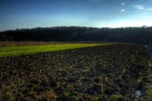 Jagodina: Akcenat na ulaganja u poljoprivredu