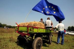 Srpski agrar čeka evropsko znanje