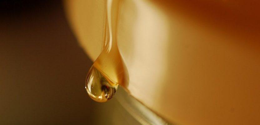EU: Pčelari traže zabranu uvoza meda iz Kine