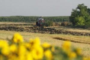 Konkurentnost srpske poljoprivrede zavisi od inovacija