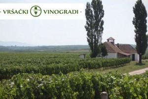 Milan Popović bi Vršačke vinograde