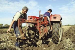Zaostaloj poljoprivredi neophodne investicije