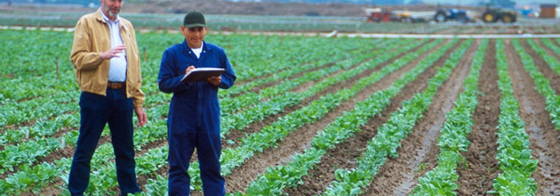 Uvode se računovodstveni standardi u poljoprivredi