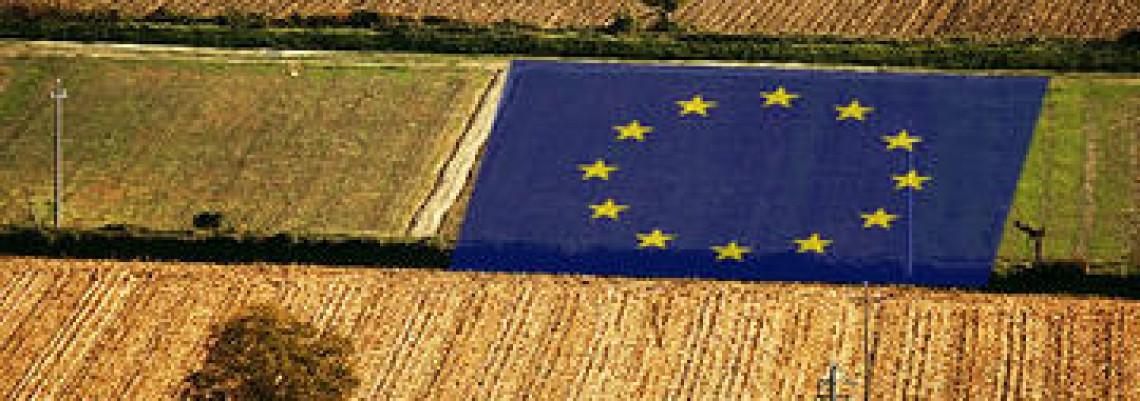 Kako se poljoprivreda priprema za EU