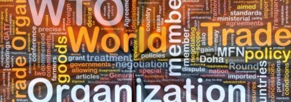 Cilj u 2014. pristupanje Srbije STO