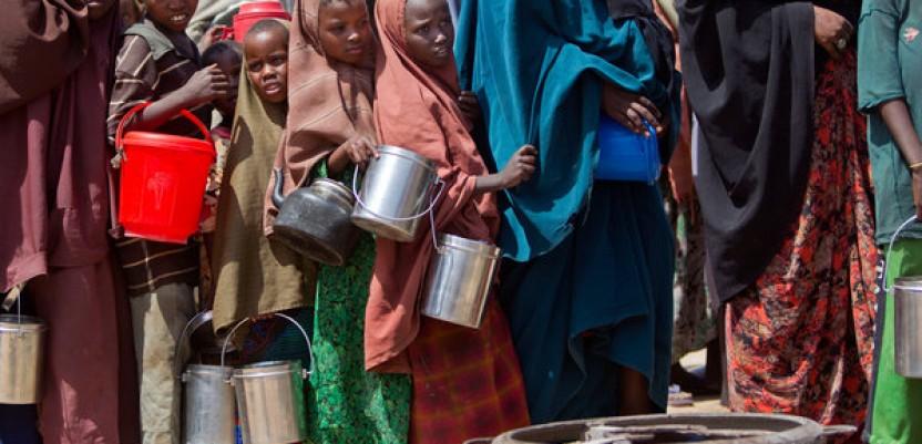 U svetu 800 miliona ljudi gladuje
