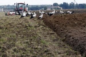 Zašto je preskočena poljoprivreda?