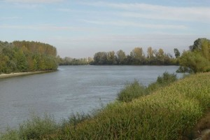 Redovna odbrana od poplava na 280 km reka u Vojvodini