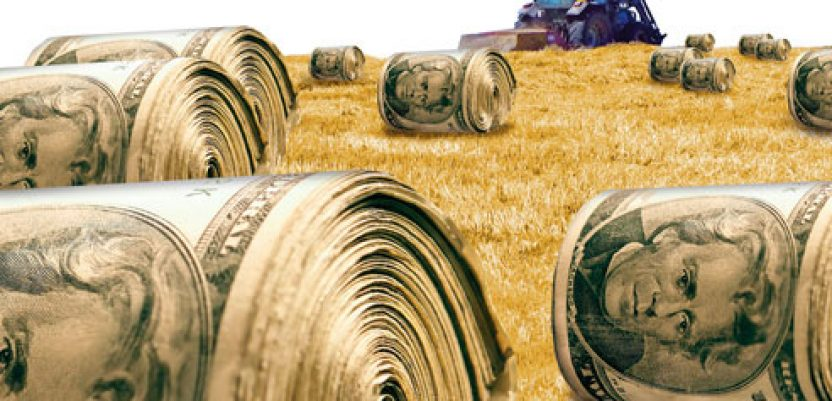 Usvojena Uredba o raspodeli podsticaja u poljoprivredi