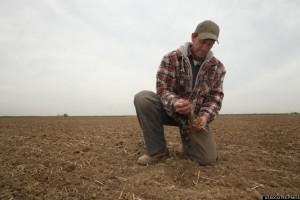 Kalifornijski farmeri bez vode