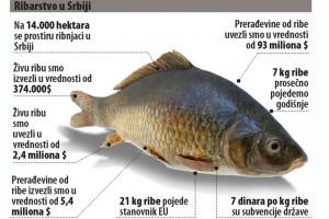 Za uvoz ribe 92 miliona dolara