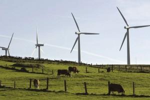 U EU postavljeno manje vetroturbina