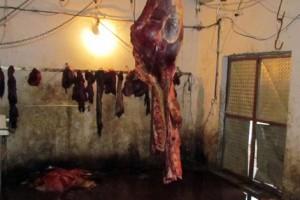 Kvalitet mesa u nelegalnom objektu nije kontrolisan