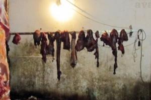 Od uginule stoke i kobasice