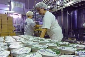 Glamočić: Mlekari će plaćati naknade