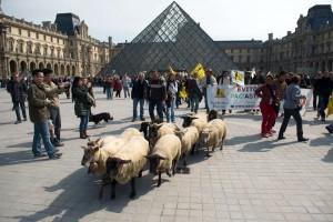"""Ovce ispred Luvra kako ne bi """"završile u muzeju"""""""
