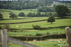 Javni poziv za praćenje skrininga za Poglavlje 11  – poljoprivreda i ruralni razvoj