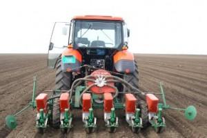 Kukuruz će biti zasejan na 1,3 miliona hektara