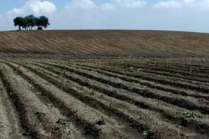 Predstavljen projekat upravljanja zemljištem