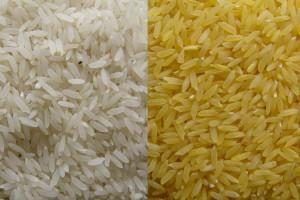 """Svađa oko """"zlatnog pirinča"""""""