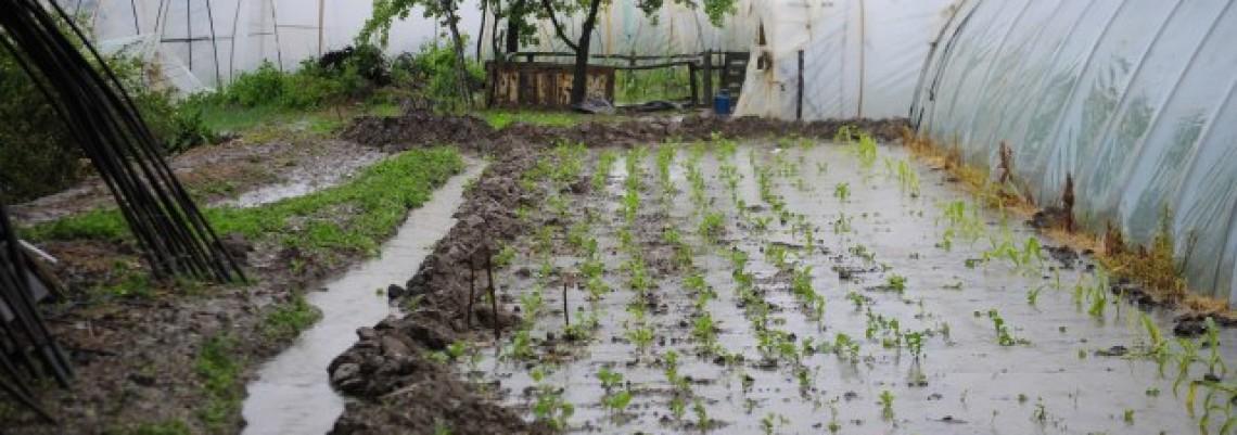 Pomoć za najugroženije poljoprivrednike