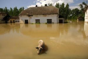 EU: Veliki doprinos obnovi Srbije od poplava