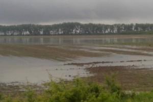 Poljoprivrednici: Stočarstvo pogodila neviđena šteta, problem na njivama pravi mulj