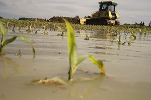 Poplave:  Životna sredina nije ugrožena