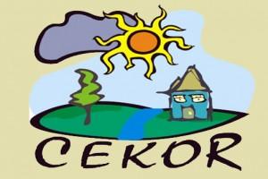 CEKOR: Srbija među deset najvećih emitera CO2 u svetu