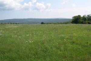 Pirot izdaje 15.000 ha zemljišta