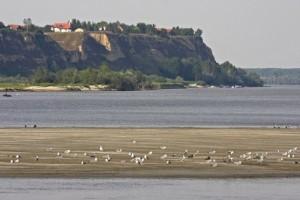 Za obnovu vlažnih područja duž Dunava 4,4 miliona dolara